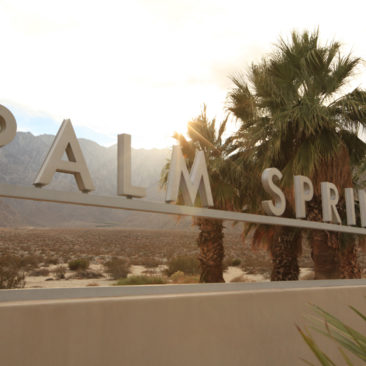 PALM SPRINGS MODERNIST